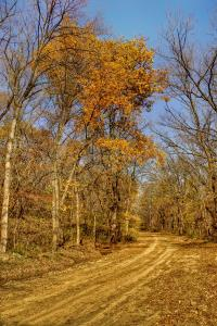 Loess Hills Autumn